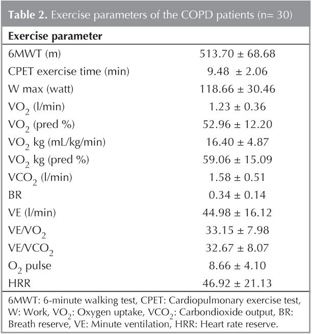 6mwt Was Significantly Correlated With Maximal Exercise Test Parameters Maximum Work Wmax Maximum Heart Rate Hrmax Oxygen Uptake Vo2